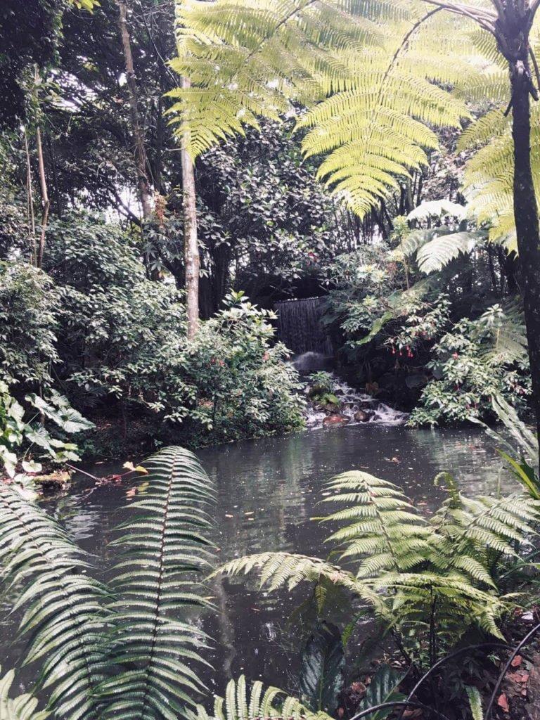 Jardín Botánico José Celestino Mutis